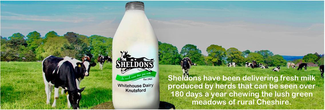 Club Sponsor: Sheldon's Dairy